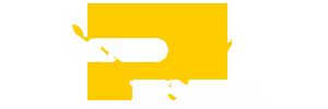 rhinopools logo